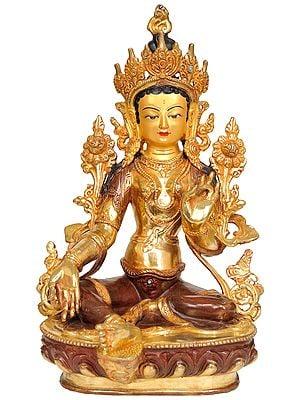 Goddess Green Tara (Tibetan Buddhist Deity)