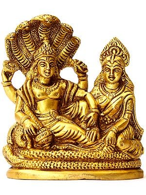 Lord Vishnu and Lakshmi Ji Seated on Sheshnag