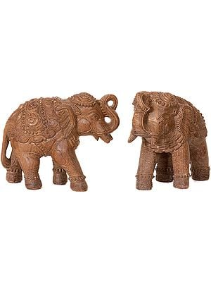 Handcrafted Elephant Pair with Upraised Trunks (Supremely Auspicious According to Vastu)