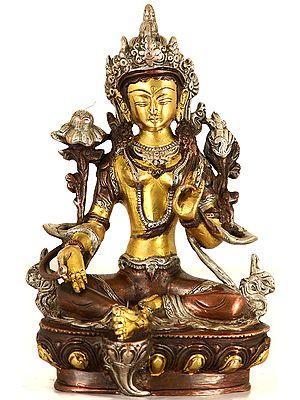 Tibetan Buddhist Savior Goddess Green Tara