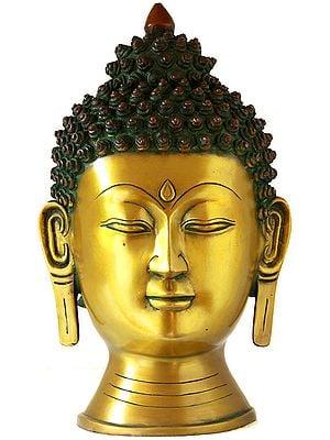 Introspective Buddha Head