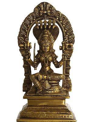 Goddess Mariamman - South Indian Durga