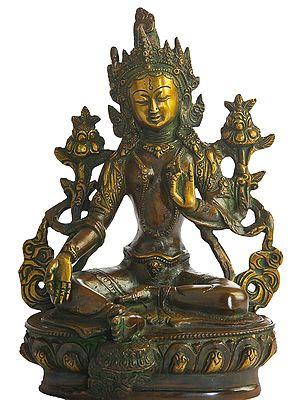 Tibetan Buddhist Deity Savior Green Tara