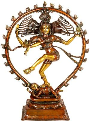 Large Size Nataraja in Brown and Gold Hues