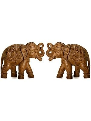 Decorated Elephant Pair