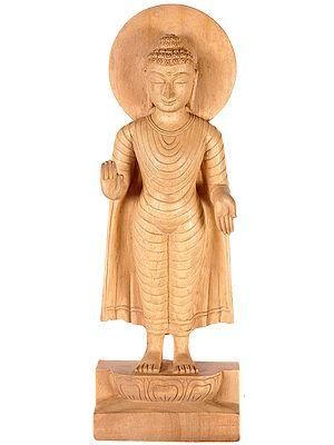 Standing Buddha in Abhaya Mudra