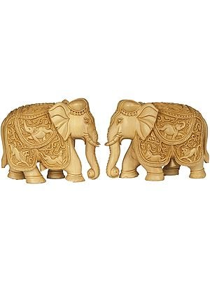 Royal Elephant Pair (Saddle Carved with the Scenes from Wild Life)