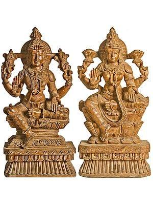 Lakshmi Vishnu