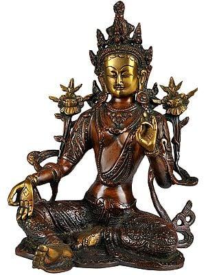 Tibetan Buddhist Goddess Green Tara in Brown and Golden Hues