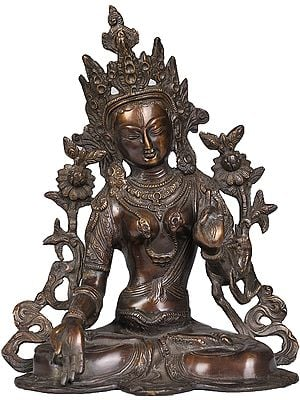 Tibetan Buddhist Goddess White Tara in Brown Hue