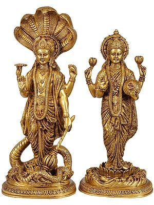 Lord Vishnu Standing on Sheshnag with Lakshmi Ji