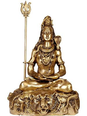 Large Size Mahayogi Shiva in Pranayama