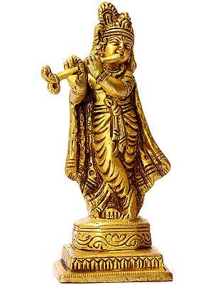 Small Bhagwan Krishna