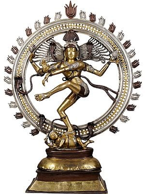 Triple Hued Large Nataraja