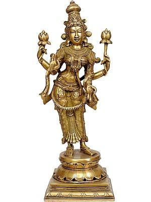 Four Armed Standing Lakshmi