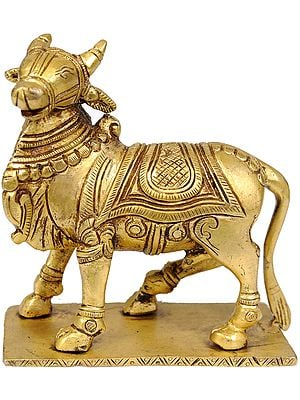 Vrisha (Nandi)  -  Vahana of Shiva