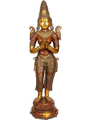 Large Size Namaste Lady