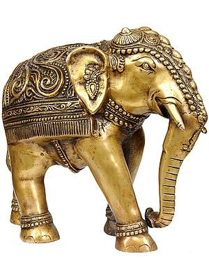 Elephant with Decorative Over-Cloth