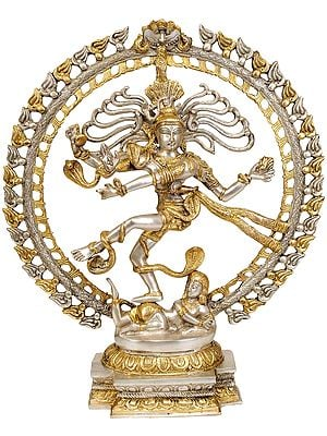 Nataraja (In Golden and Silver Hues)