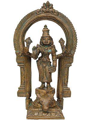 Devi Durga Standing Buffalo Head
