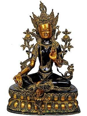 Large Size Tibetan Buddhist Goddess Green Tara