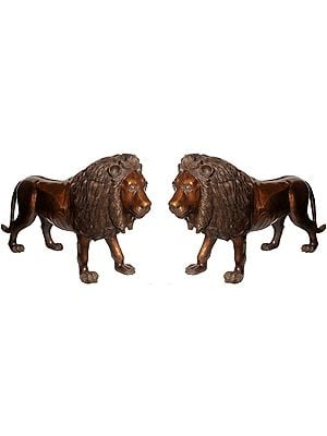 Large Size Pair of Lions