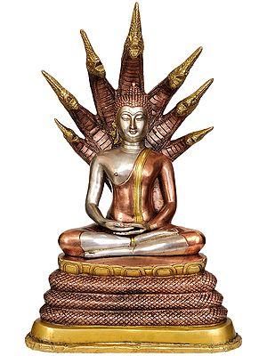 Buddha Under Serpent Muchalinda