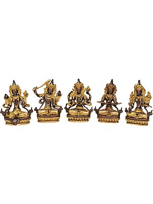 Tibetan Buddhist Deities-Green Tara, Manjushri, Chenrezig, Vajradhara and White Tara (Set of 5 Sculptures)