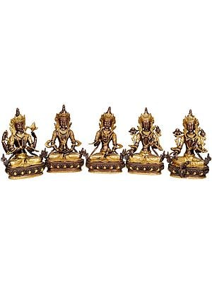Tibetan Buddhist Deities Chenrezig, Amitabha, Vajrasattva, White Tara and Green Tara (Set of 5 Sculptures)