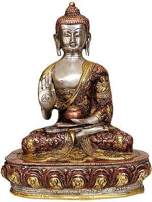 Tibetan Buddhist Blessing Buddha