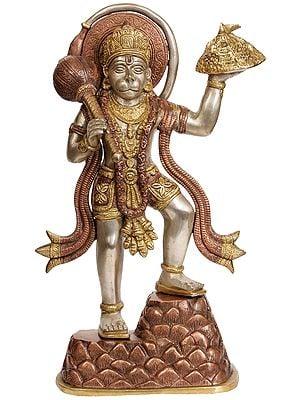 Hanuman Ji Carrying Mount of Sanjeevani Herbs