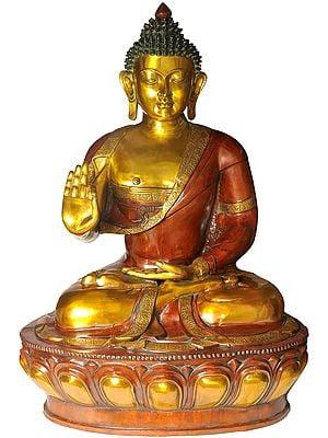 Large Size Lord Buddha in Vitarka Mudra