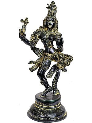 Dancing Ardhanarishvara (Shiva Shakti)