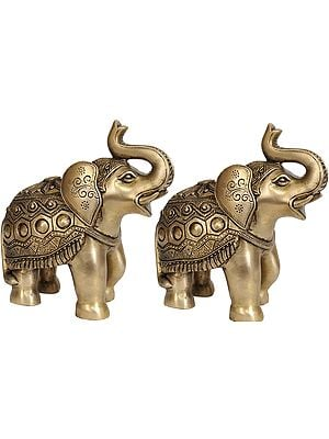 Decorated Elephant Pair with Upraised Trunks