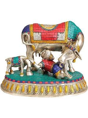 Baby Krishna Drinking Cow's Milk