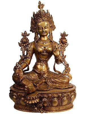Green Tara (Tibetan Buddhist Deity)