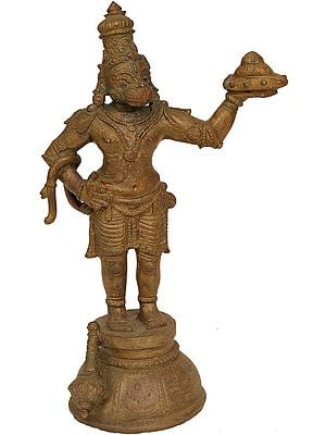 Lord Hanuman Carrying Mount Dron