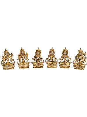 Tibetan Buddhist Deities: Green Tara, White Tara, Vajradhara,  Amitabha, Vajrasattva and Chenrezig (Set of 6 Sculptures)