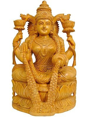 Goddess Lakshmi Raining Prosperity