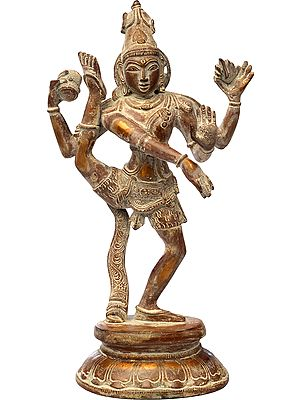 The Glorious Tandava Of Shiva