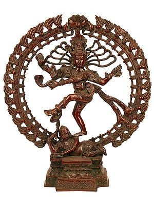 Nataraja Triumphs Over Ignorance