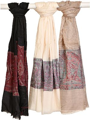 Lot of Three  Semi Cashmere Palla-Jamawar Stole from Amritsar with Woven Border