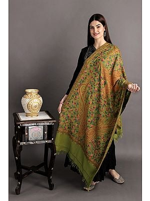 Stole from Kashmir with Ari-Hand-Embroidered Giant Paisleys