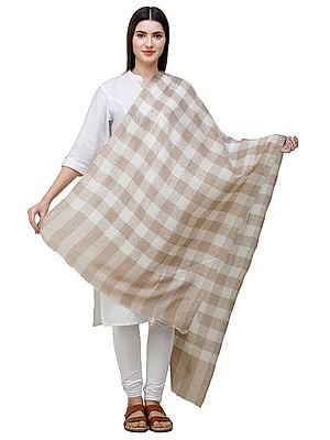 Beige Pashmina Stole from Amritsar with Woven Checks