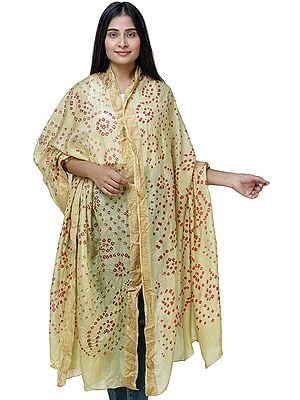 Tie-Dye Bandhani Dupatta From Gujarat with Embroidered Border