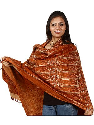 Resham Jamawar Shawl from Banaras with Large Woven Paisleys All-Over
