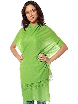 Lime-Green Pure Pashmina Scarf from Nepal