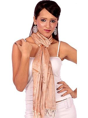 Tan Banarasi Stole with Tanchoi Weave