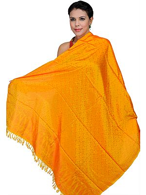 Banarasi Handloom Dupatta with Tanchoi Weave All-Over