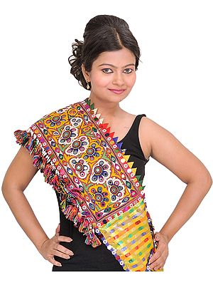 Multi-Color Dupatta from Kutch with Rabari Embroidery and Mirrors